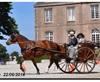 Vign_2014-0622-Carneville-0292