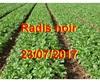 Vign_2017-07-23-0836