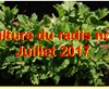 Vign_2017-07-30-0908