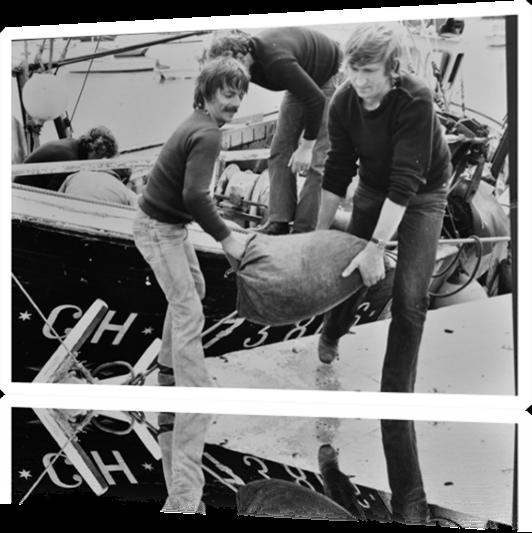 Vign_Moules-80-Archives-0883