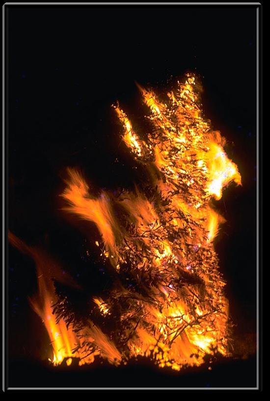 Vign_feu-stjean