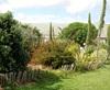 Vign_jardin-170