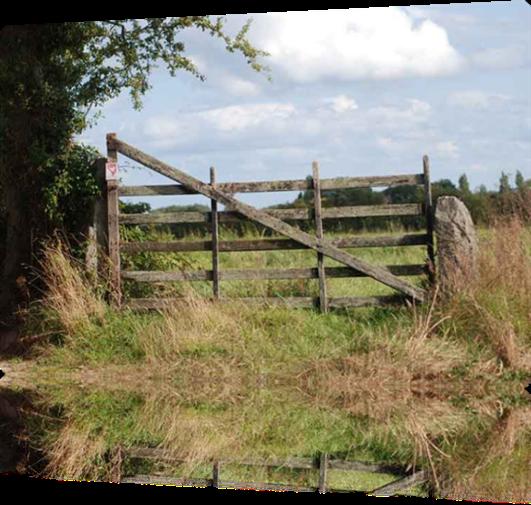 Vign_potille-barriere-010